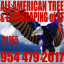 All American Tree Services